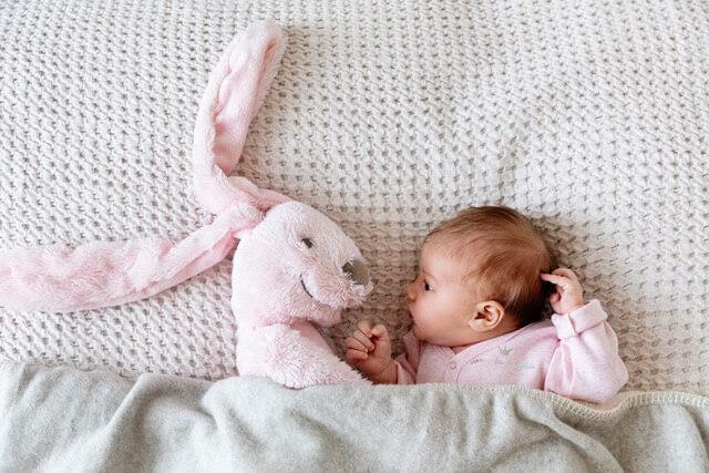 Pink Rabbit Richie HR.jpg